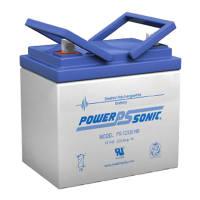 Power-Sonic PS-12100F1