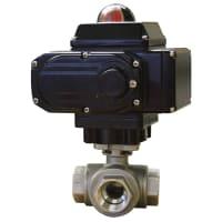 Dwyer Instruments WE31-FMD02-L1-C