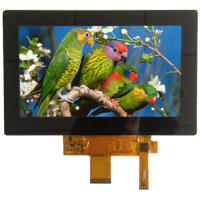 Focus Display Solutions E70RG88048LB2M450-C